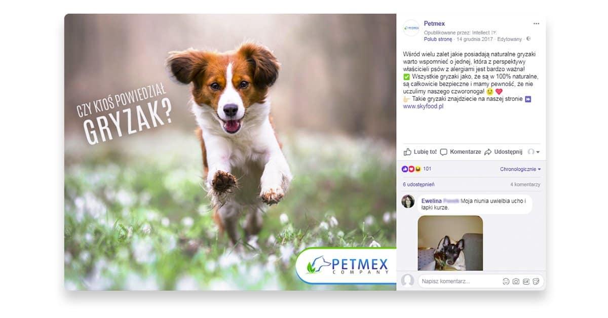 biegnący pies grafika z Facebooka