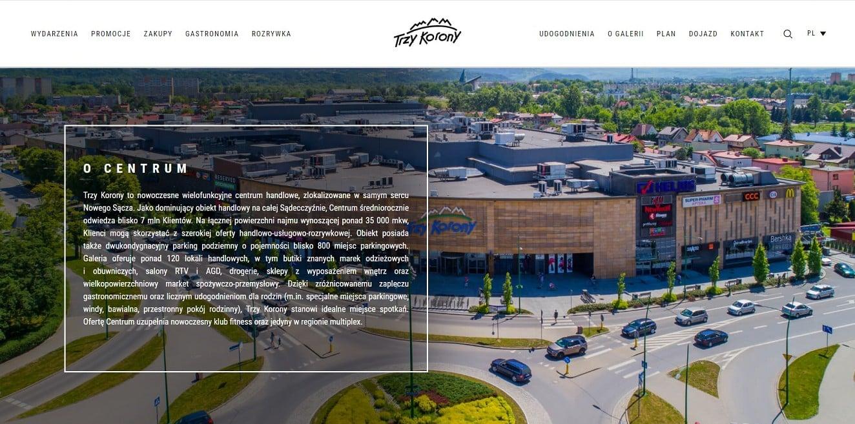 strona www galerii